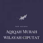 Pemesanan Paket Aqiqah Murah wilayah ciputat tangerang selatan