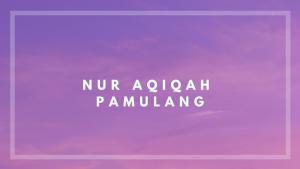 catering aqiqah pamulang