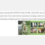 harga kambing aqiqah 2019 tangerang